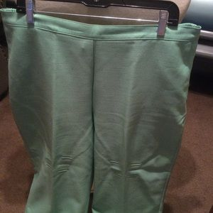 Pretty 18 Alfred Dunner pants